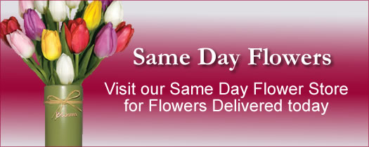 Same Day Flowers