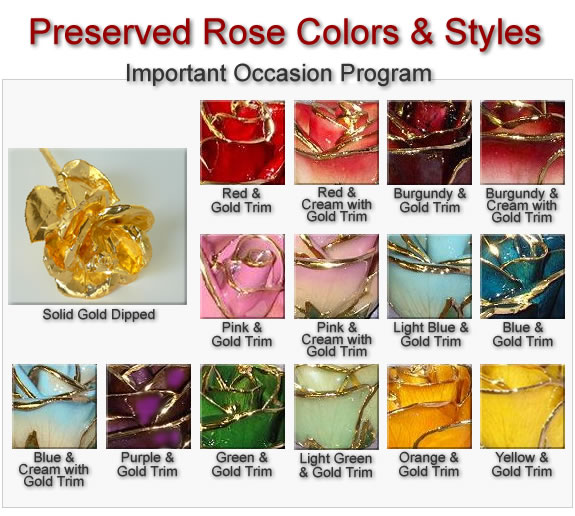 Gold Rose Example includes Colored Rose with Gold Trim, Gold Dipped Rose, Platinum Dipped Rose, Gold Dipped Open Bloomed Rose, Silver Dipped Rose
