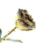 24K Gold Trimmed Rose: The Twilight Rose
