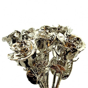 6 Platinum Roses - Rose Bouquets and Sets Gold Roses