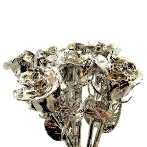 6 Silver Roses - Rose Bouquets and Sets Gold Roses