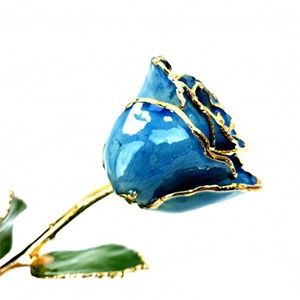 Dark Blue Gold Rose Trimmed in 24K - Colored Roses and Gold Gold Roses