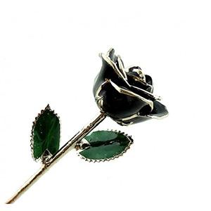Black Platinum Trimmed Rose - Colored Roses and Platinum Gold Roses