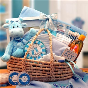 New Arrival Blue Baby Carrier Gift Basket - Babies and New Parents Gift Baskets and Gourmet Food