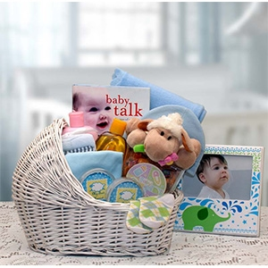 Baby Gift Delivery Ideas : Newborn baby blue bassinet gift collection new