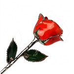 Bright Red Colored Rose Preserved Forever in Lacquer with Real Platinum Trim