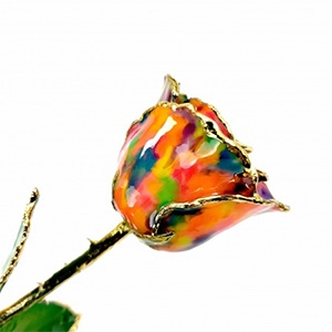 24K Gold Trimmed Rose: The Picasso Rose