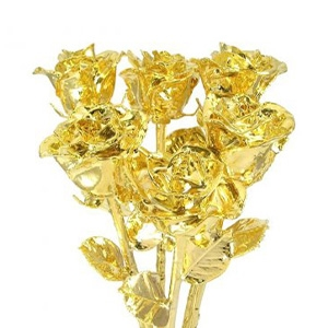6 Gold Dipped Roses