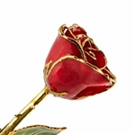 Red Lacquer and Gold Trimmed Rose
