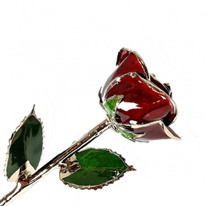 Burgundy Lacquer and Platinum Rose - Colored Roses and Platinum Gold Roses