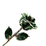 Green Rose Preserved Forever and Trimmed in Platinum