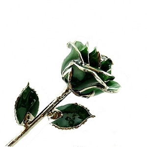 Dark Green Lacquer and Platinum Rose - Colored Roses and Platinum Gold Roses