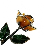 Amber Colored Rose Preserved Forever in Lacquer with Real Platinum Trim