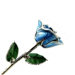 Real Blue Rose Preserved in Lacquer and Trimmed in Real Platinum