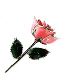 A real pink rose preserved in lacquer and trimmed in platinum