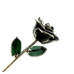 Black Rose Trimmed in Platinum Trim, Preserved Forever
