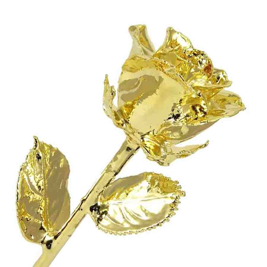 Gold Dipped Rose Preserved Roses 24k
