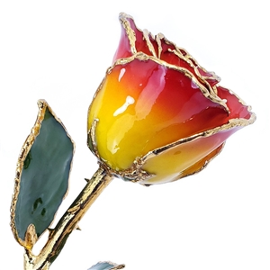 Yellow and Red 24 Kt Gold Dipped Rose
