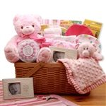 First Teddy Pink Baby Basket