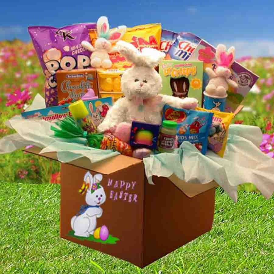 Christmas Gift Baskets For Families: Family Fun Easter Care Package