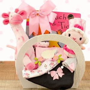 A basket for the new baby girl that includes baby sleeper, socks, cap, receiving blanket, bib and more!