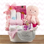 A metal tin basket loaded with all the necessities for the new baby girl!