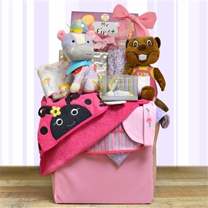 A mesh and fabric folding storage cube with toys, clothes, and keepsake treasures for baby and parents.