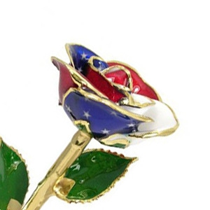 24k Gold American Flag Rose