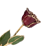 Burgundy Rose preserved in Lacquer and Trimmed in 24 karat Gold