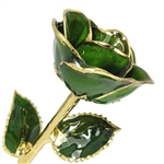 Emerald Green, May Birthstone Color Rose, trimmed in gold