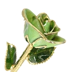 Peridot Green, August Birthstone Color Rose, trimmed in 24K Gold