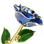 Sapphire Blue September Birthstone 24K Gold Trimmed Rose