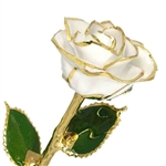 White Diamond Birthstone Color Rose, trimmed in 24K Gold