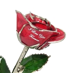 Silver Trimmed Rose and Colors - Variety of Colors and Optional Personalization