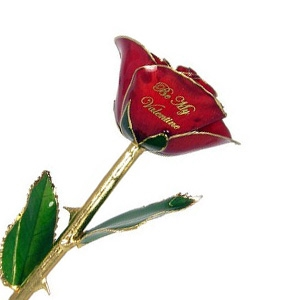 Be My Valentine Rose