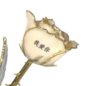 I Love You Rose in Different Languages - Personalized Roses Gold Roses